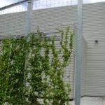 Curtain Green Wall