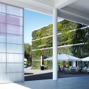 Green Walls Help Clean The Air We Breathe