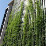 Sihl City Green Wall Structure